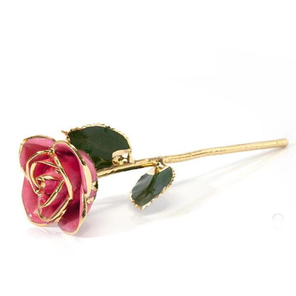 Gold-Dipped Natural Pink Rose