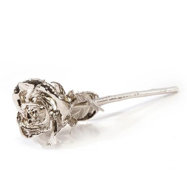 Platinum-Dipped Natural Rose